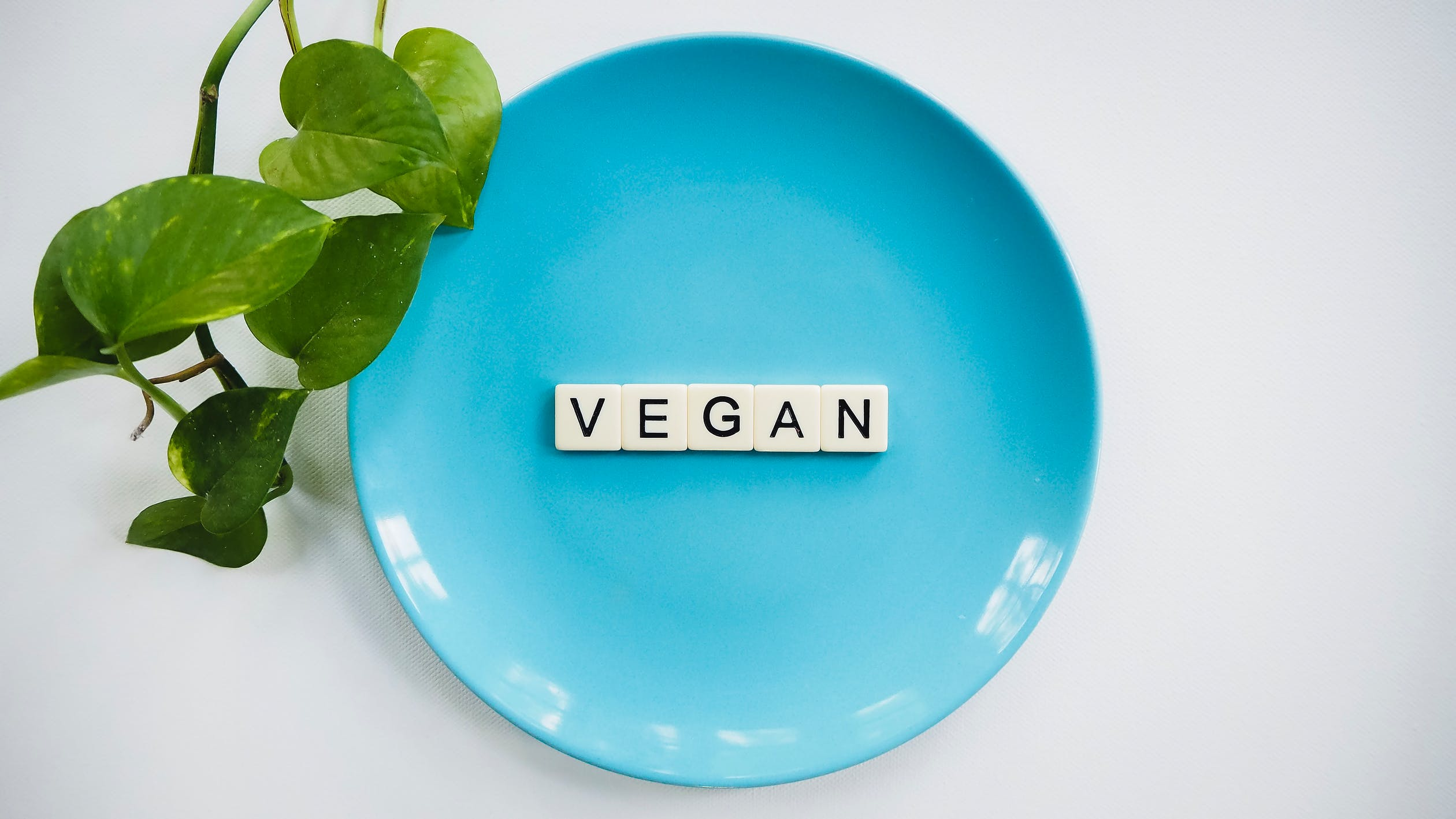 Veganské stravování a jeho možnosti